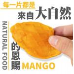 【外銷嚴選新鮮原味】盧家愛文芒果乾100g/包